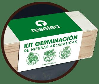 Kit Germinacion Aromaticas Resetea