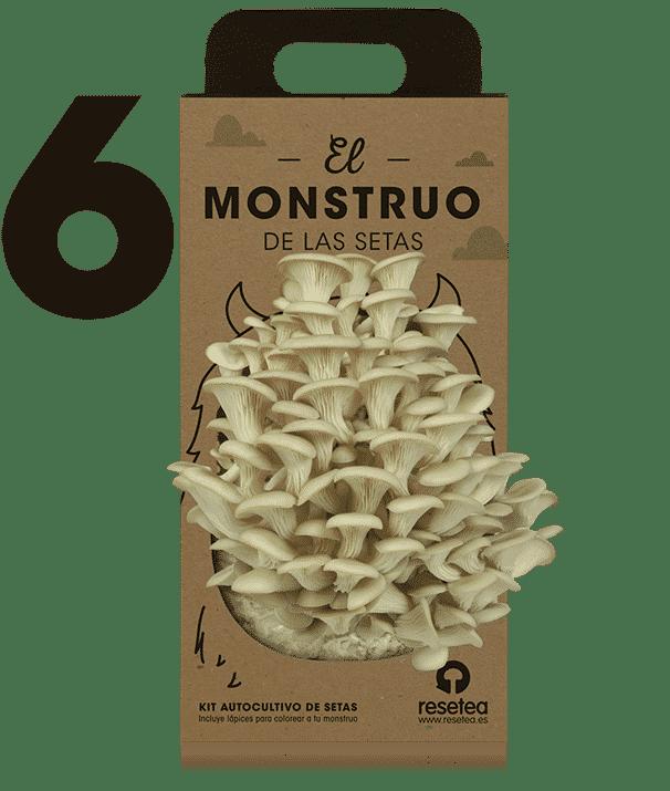 Instrucciones del Monstruo de las setas 6