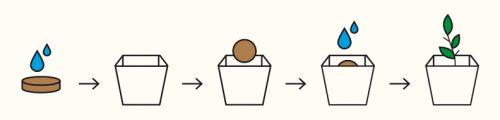 Instrucciones Aromaticas