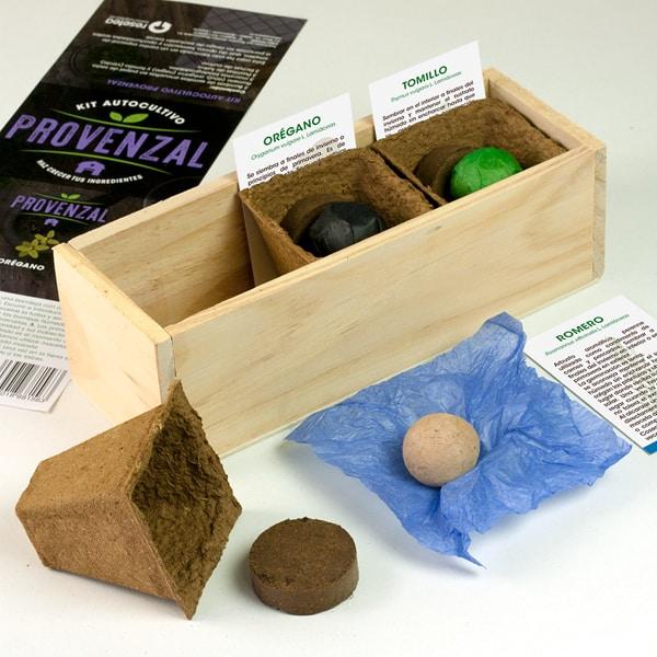 es facil cultivar oregano y tomillo en casa