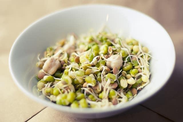 brtes de legumbres para comer en verano y autocultivar