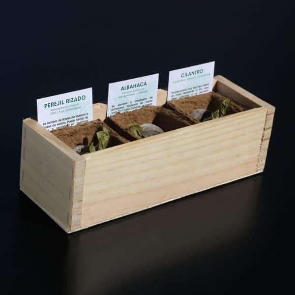 Mini huerto de hierbas aromaticas 3