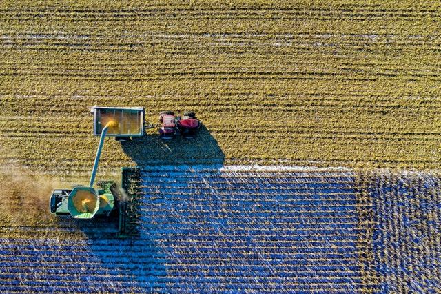 Campos de cultivo insdustrializados