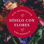 Diselo con Flores Portada _ Resetea