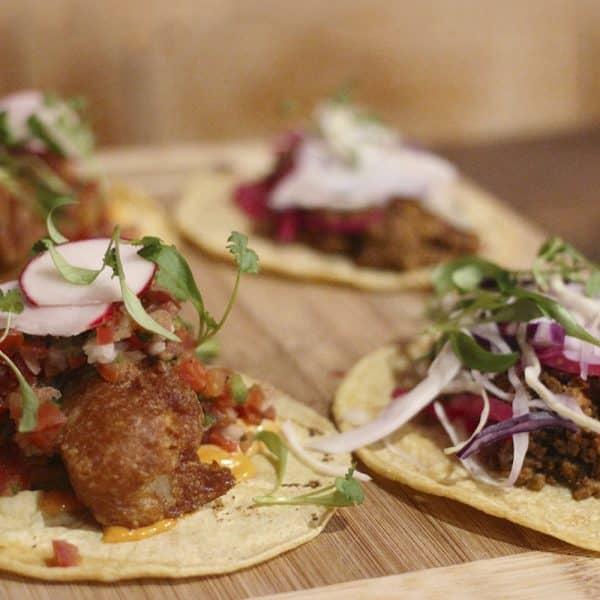 Resetea – Kit Autocultivo de brotes – Tacos 2
