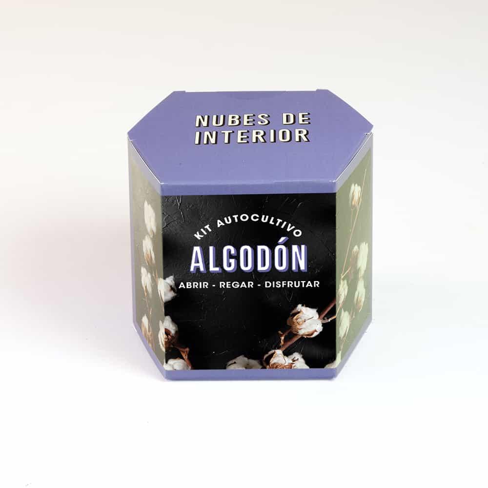 Kit Autocultivo Algodón