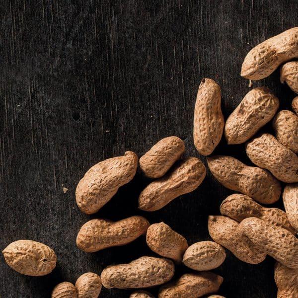 cacahuetes resetea