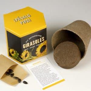 como cultivar girasoles en casa