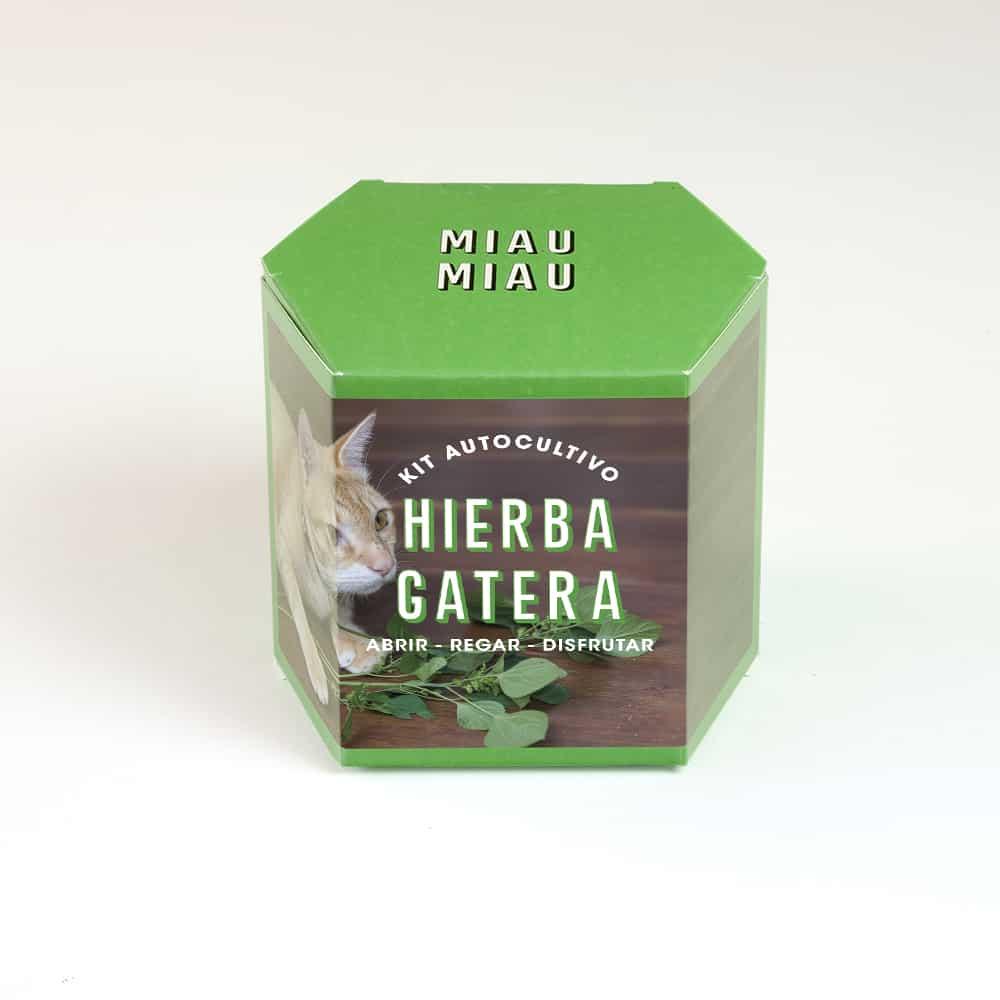 Kit Autocultivo Hierba Gatera