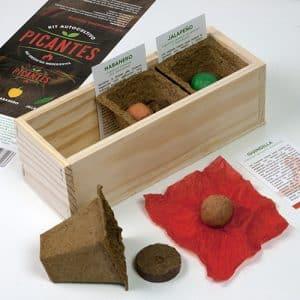 facil cultivo de jalapeños en casa